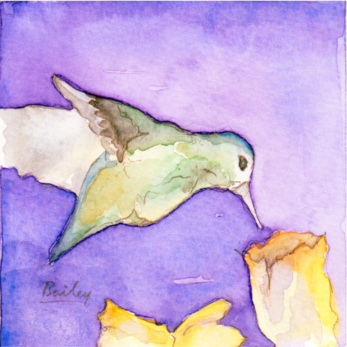 Hummingbird #3, Watercolor Painting